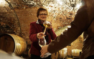 experience a guided tour through the winery